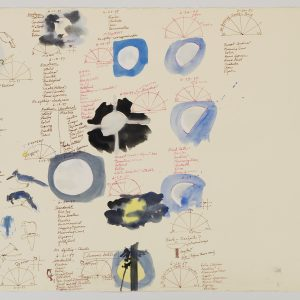 "Birds and Moons II, 1997, ink, watercolor, gouache, on buff Stonehenge paper, 22"" x 30"""